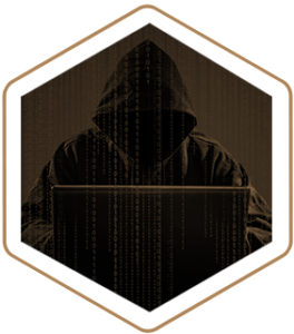 Cyber Crime Lawyer
